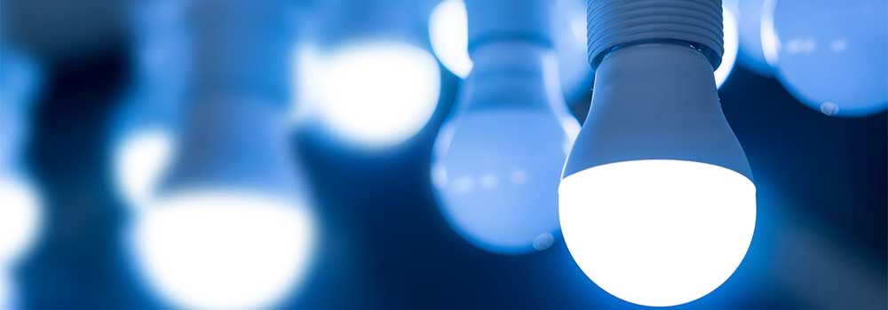 Change-the-Bulbs
