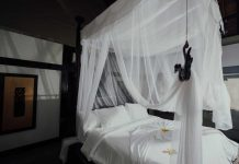 Mosquito-Nets-for-Your-Home-on-ArchitecturesLab