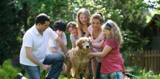 Some-Practical-Tips-to-Reduce-Pet-Care-Costs-with-Ease-on-architectureslab